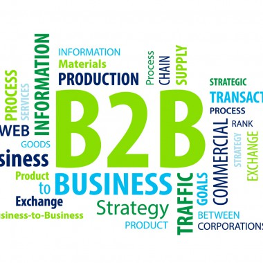 Business-to-Business Commerce